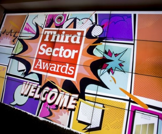 Success at the Third Sector Awards 2017
