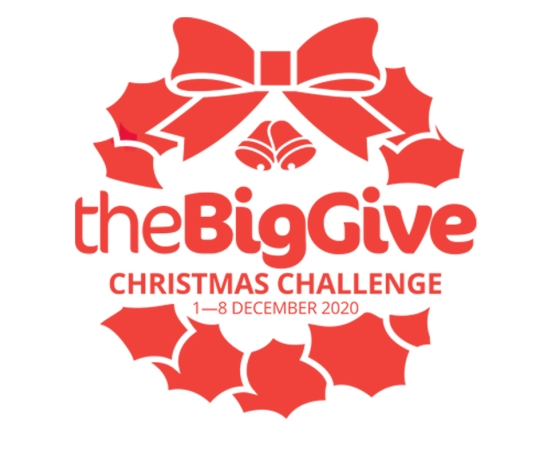 Big Give Christmas Challenge 2020